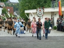 03. Juli 2011 - Schützenfest Sonntag